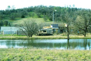 Vernal pond to recharge water table, in front of solar home and gardens